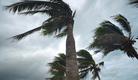 Le cyclone Berguitta menace l'île Maurice et la Réunion
