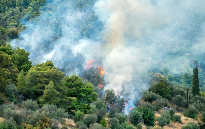 Waldbrand Griechenland, Forest Fire Greece.16063.jpg