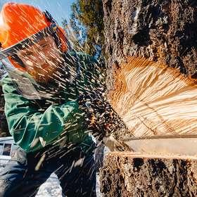 L'industrie forestière finlandaise refuse désormais les accords de branche