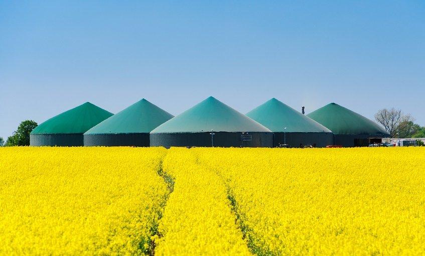 Biogasanlage hinter einem Rapsfeld 3